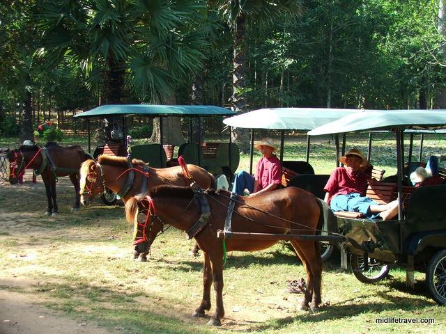 Local Transport Angkor Wat