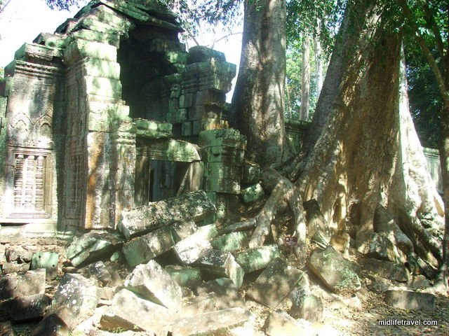 Jungle winning-  Angkor War, Cambodia
