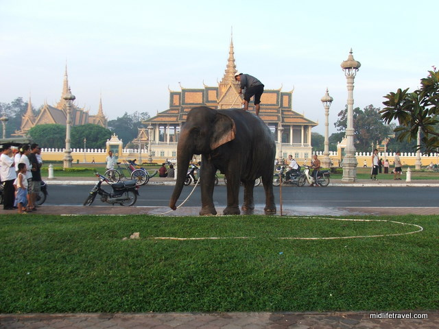 Elephant washing in front of the Grand Palace, Phnom Penh, Cambodia