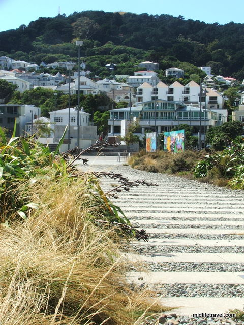 Waitangi Park, Wellington, New Zealand
