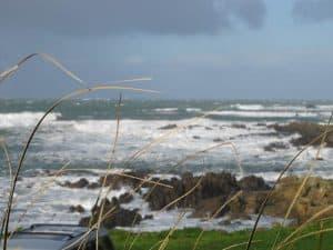 A Good Storm in Wellington